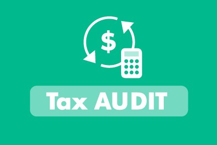 IRS audit what to do