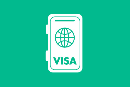 us visa laws and immigration status
